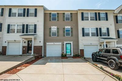 Morgantown Condo/Townhouse For Sale: 185 Birds Eye View Drive