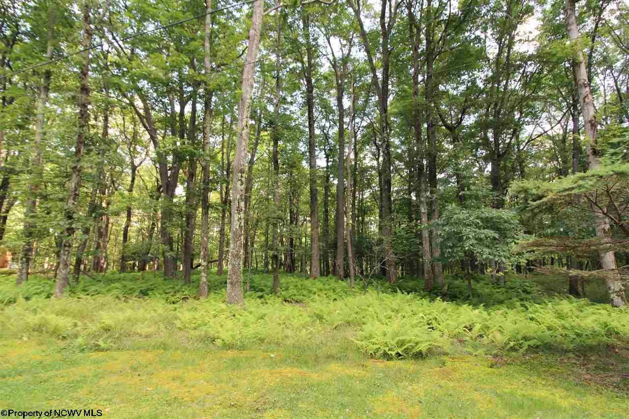 Lot 87 E Alpine Drive,