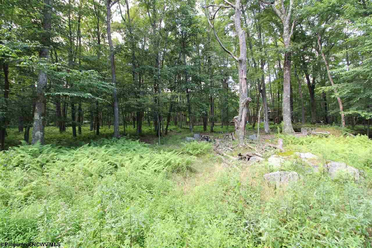 Lot 84 E Alpine Drive,