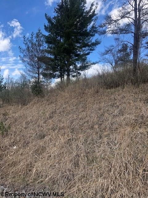 5 Fern Ridge Loop,
