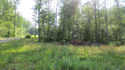 Lewisburg Residential Lots & Land For Sale: LOT 22 Woodhaven Subdivision
