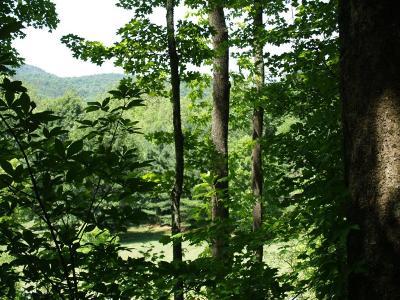 White Sulphur Springs Residential Lots & Land For Sale: 172 White Sulphur Drive