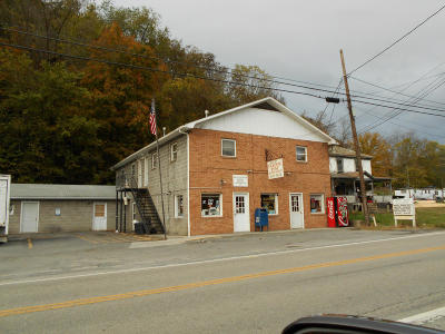 Greenbrier County Commercial For Sale: 35467 Midland Trail, East