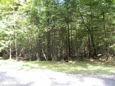 Lewisburg WV Residential Lots & Land For Sale: $45,000