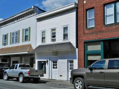 Greenbrier County Commercial For Sale: 108 Washington Street
