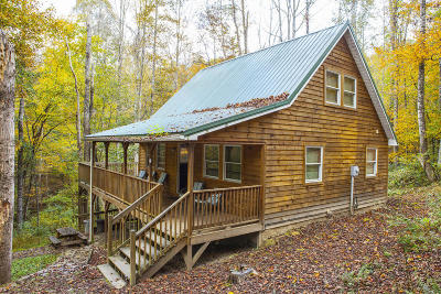 Fayette County, Greenbrier County, Mercer County, Monroe County, Nicholas County, Pocahontas County, Raleigh County, Summers County Single Family Home For Sale: 101 Lake Escape Drive