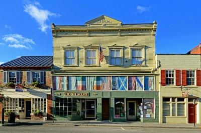 Greenbrier County Commercial For Sale: 1030 EAST Washington Street