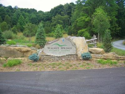 Union Residential Lots & Land For Sale: Lot 3, Walnut Springs