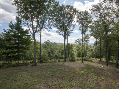 White Sulphur Springs Residential Lots & Land For Sale: 861 Summit Village Trail