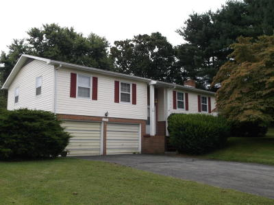 Lewisburg WV Single Family Home For Sale: $178,000