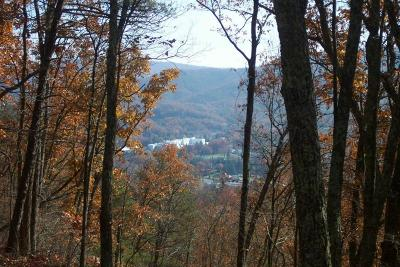 White Sulphur Springs Residential Lots & Land For Sale: 732 Wilson Ridge