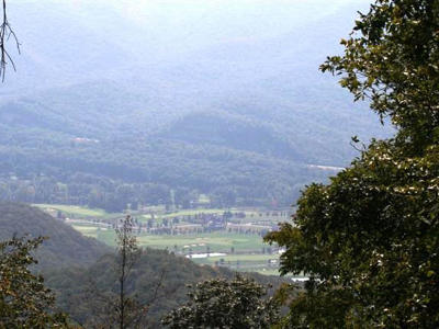 Greenbrier County Residential Lots & Land For Sale: 221 Summit Village Trail