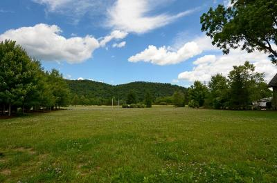 White Sulphur Springs WV Residential Lots & Land For Sale: $375,000