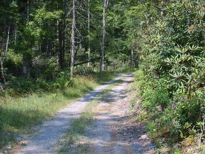 Lewisburg Residential Lots & Land For Sale: Keister Road