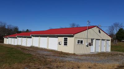 Renick WV Commercial For Sale: $129,000