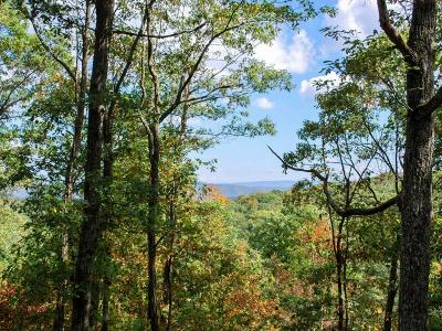 Greenbrier County Residential Lots & Land For Sale: 294 North Ridge