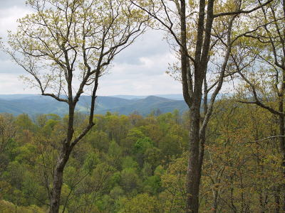 Greenbrier County Residential Lots & Land For Sale: 462 Summit Village Trail