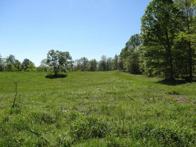 Residential Lots & Land For Sale: Stump Lick Road