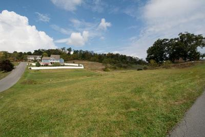 Lewisburg WV Residential Lots & Land For Sale: $20,000