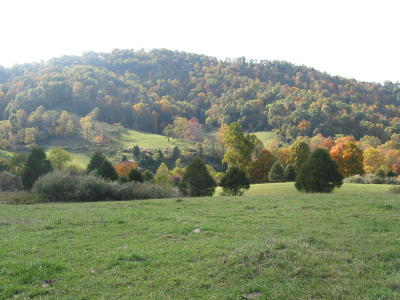 Greenbrier County Residential Lots & Land For Sale: RT 12 Alta Drive