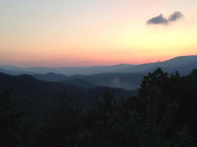 Greenbrier County Residential Lots & Land For Sale: LOT 41 Pine Ridge Way @ The Overlook