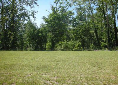 White Sulphur Springs Residential Lots & Land For Sale: 156 Prospect Circle