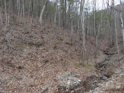 White Sulphur Springs Residential Lots & Land For Sale: LOT 21 Blackberry Way