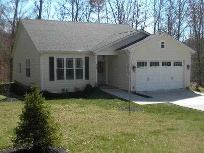 Lewisburg Single Family Home For Sale: 204 Brookside Dr.