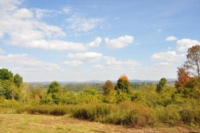 Lewisburg Residential Lots & Land For Sale: 100 Rich Hollow Road