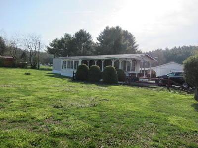 White Sulphur Springs WV Mobile Home For Sale: $40,000