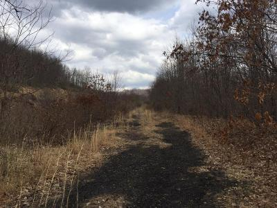 Residential Lots & Land For Sale: Coggins Knob Road- Snow Hill
