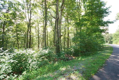 White Sulphur Springs Residential Lots & Land For Sale: 540 Summit Village Tr.