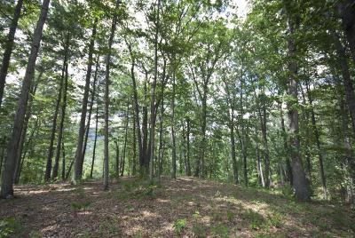 White Sulphur Springs Residential Lots & Land For Sale: 196 Deer Wood Ln.