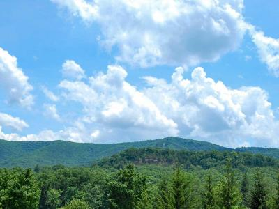 Greenbrier County Residential Lots & Land For Sale: 302 Ashford Court