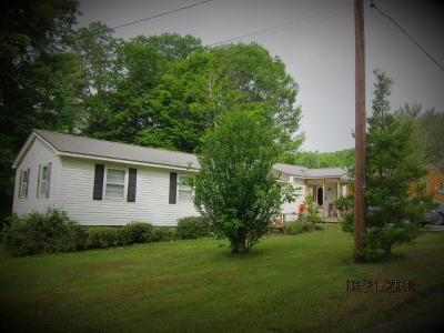 Greenbrier County Single Family Home For Sale: 228 Big Mountain Rd