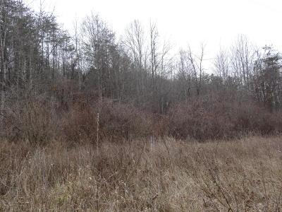 White Sulphur Springs WV Residential Lots & Land For Sale: $60,000