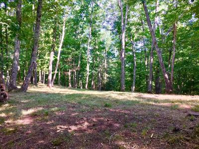 Lewisburg Residential Lots & Land For Sale: Stonehendge Subdivision