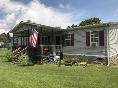 Meadow Bridge WV Single Family Home For Sale: $78,000