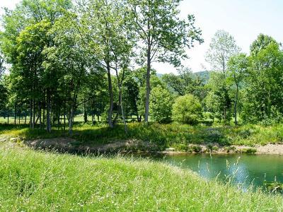 White Sulphur Springs WV Residential Lots & Land For Sale: $399,000