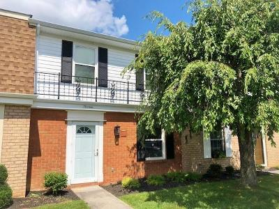 Lewisburg WV Condo/Townhouse For Sale: $172,000