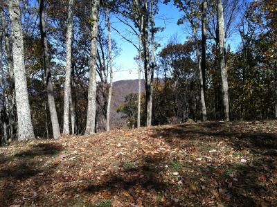 Caldwell WV Residential Lots & Land For Sale: $40,000