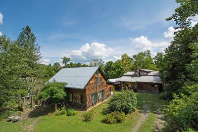 Ronceverte Single Family Home For Sale: 323 Ravens Way