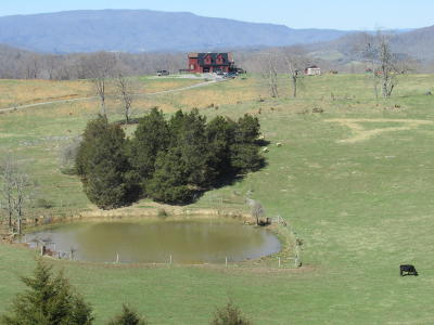 Farm For Sale: 829 Skaggs Road