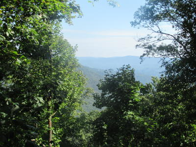 Caldwell WV Residential Lots & Land For Sale: $29,000