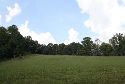 Jumping Branch WV Residential Lots & Land For Sale: $57,000