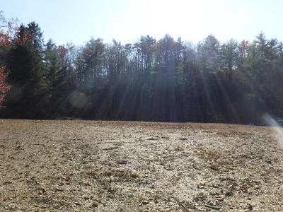 White Sulphur Springs WV Residential Lots & Land For Sale: $49,000