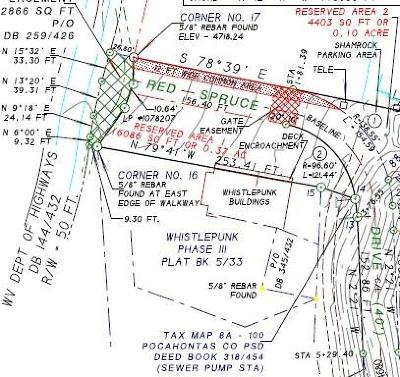 Residential Lots & Land For Sale: 1 Snowshoe Dr