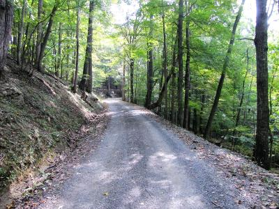 Union Residential Lots & Land For Sale: Pyne Mountain Rd