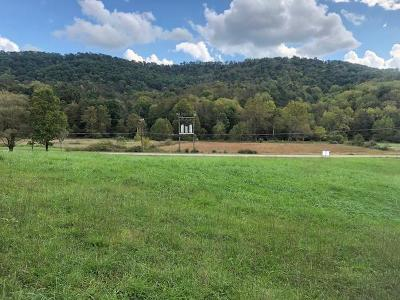 Residential Lots & Land For Sale: Rt. 219 Seneca Trail