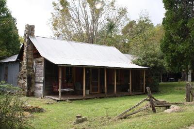 Farm For Sale: 69 Ridge View Lane